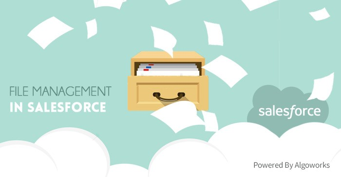 All You Need To Know About Salesforce File Management