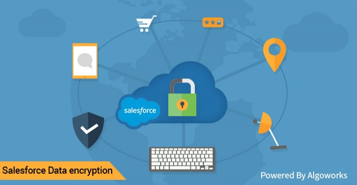 Salesforce Security – An Encryption Guide For The Paranoid