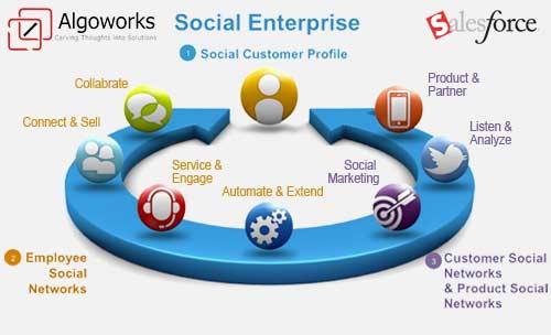 SFDC Enterprise Social Network