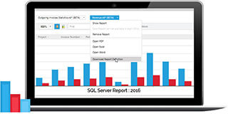 Microsoft's Reporting and Analysis tool