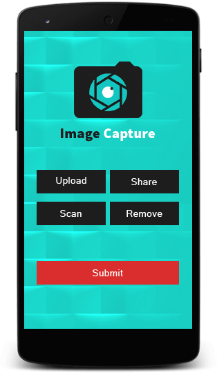 Application Image Capture development