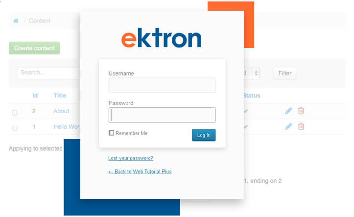 Ektron Integration