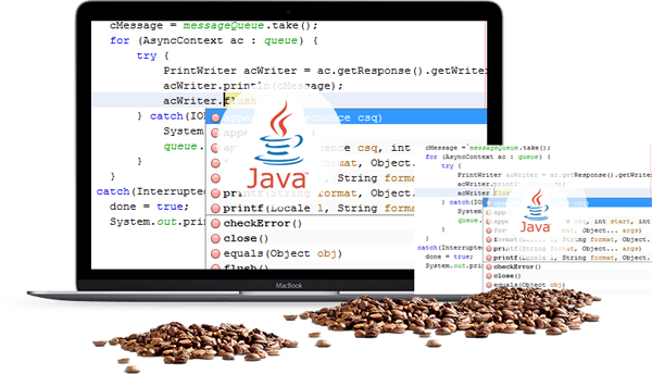 Java Web Application Developers