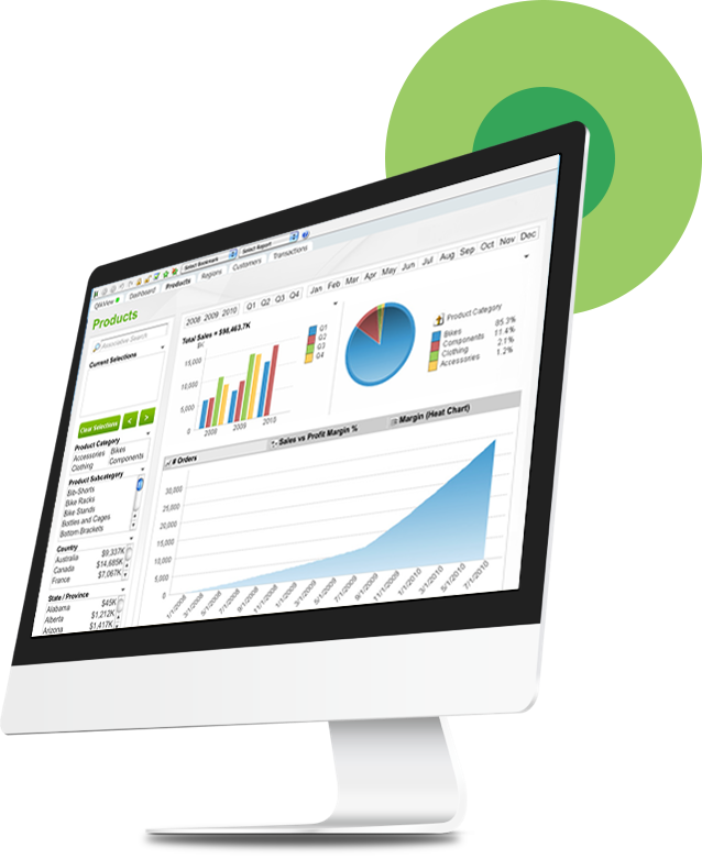 QlikView Business Intelligence Services