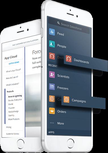 force.com App Development