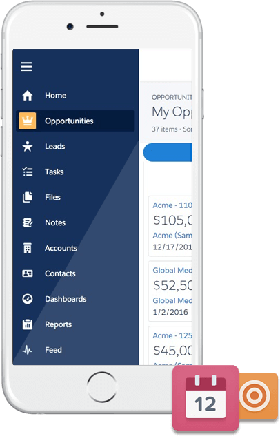 Salesforce1 Customization